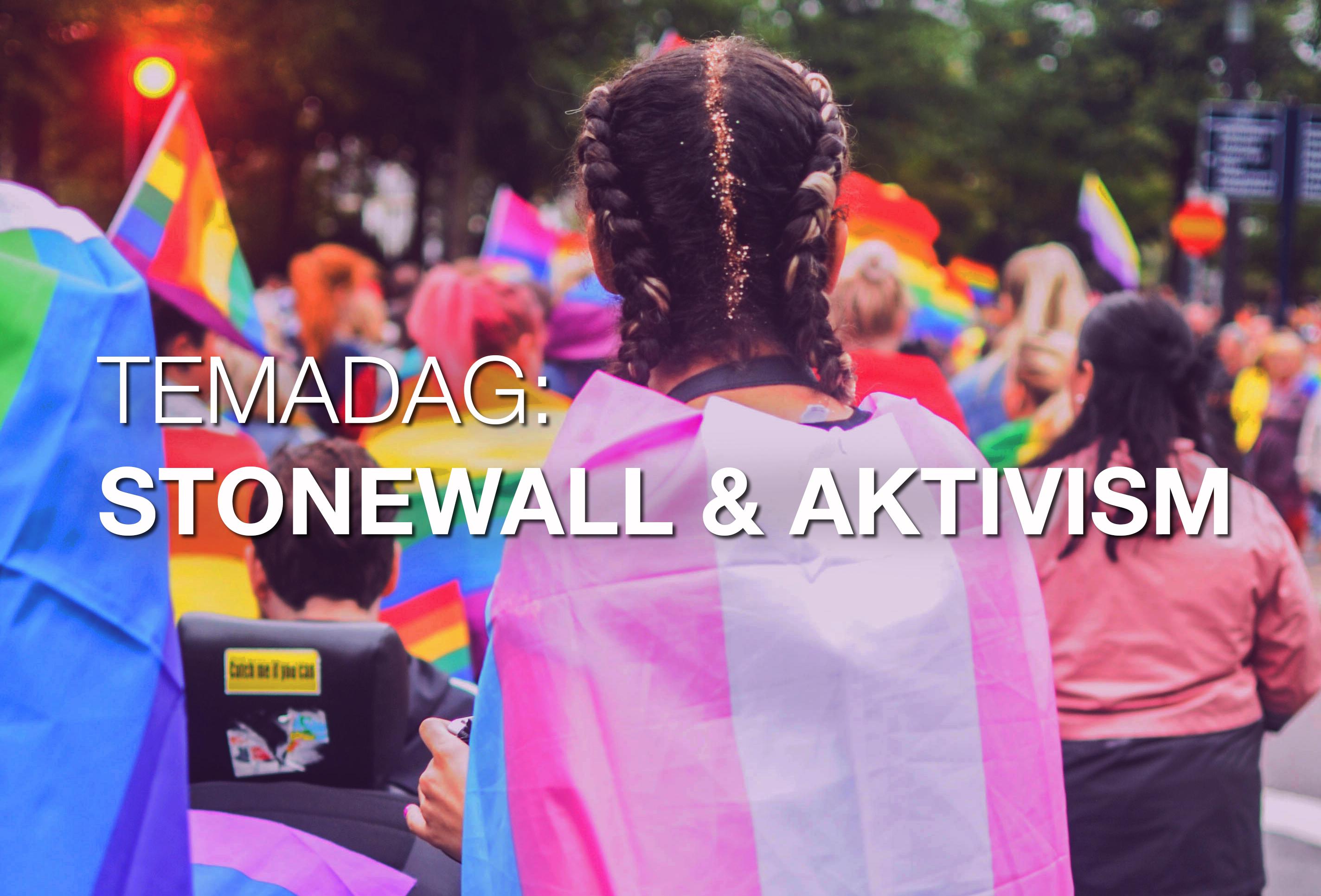 Temadag: Stonewall & aktivism