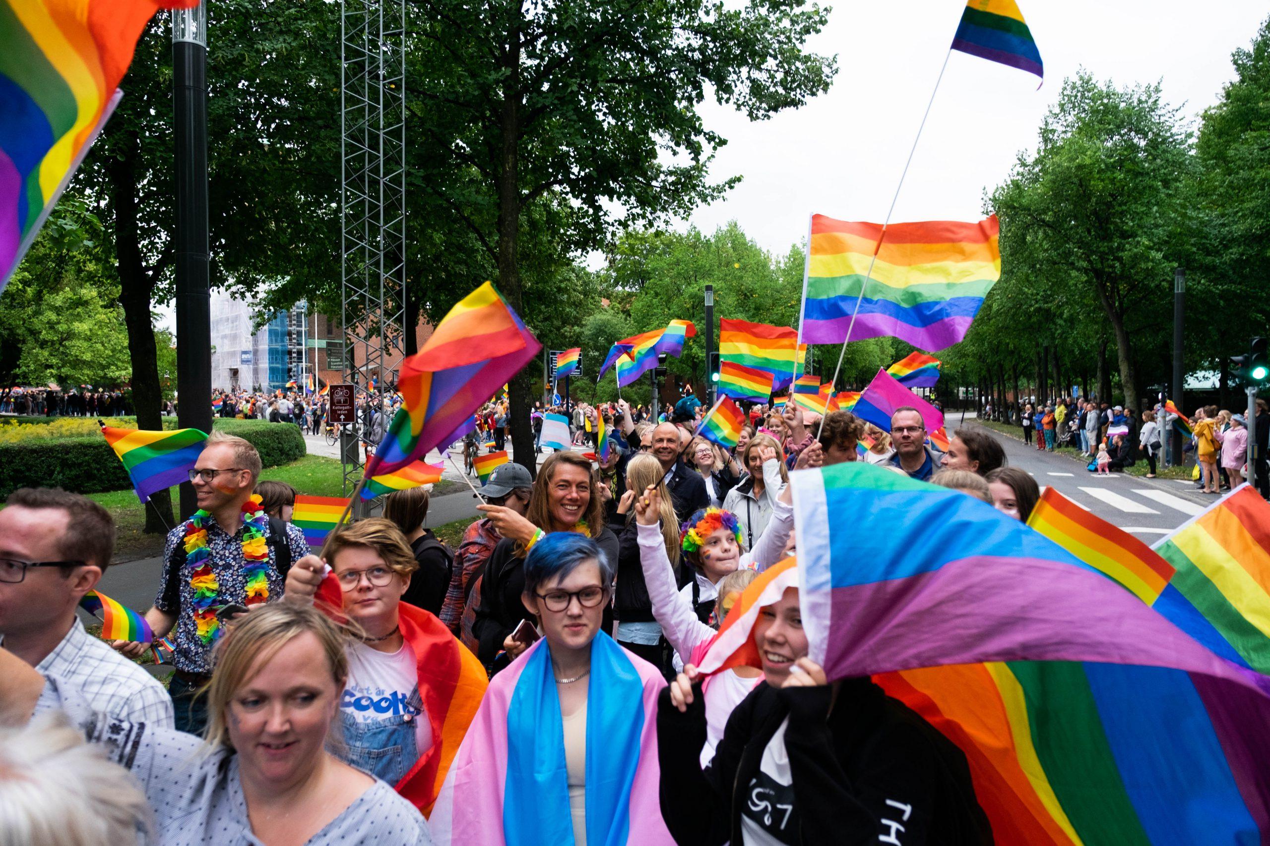 gladda persoenr går i en pride parad