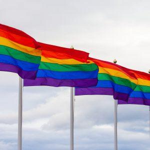 sex stycken regnbågsflaggor är uppsatta på flaggstänger och står på rad